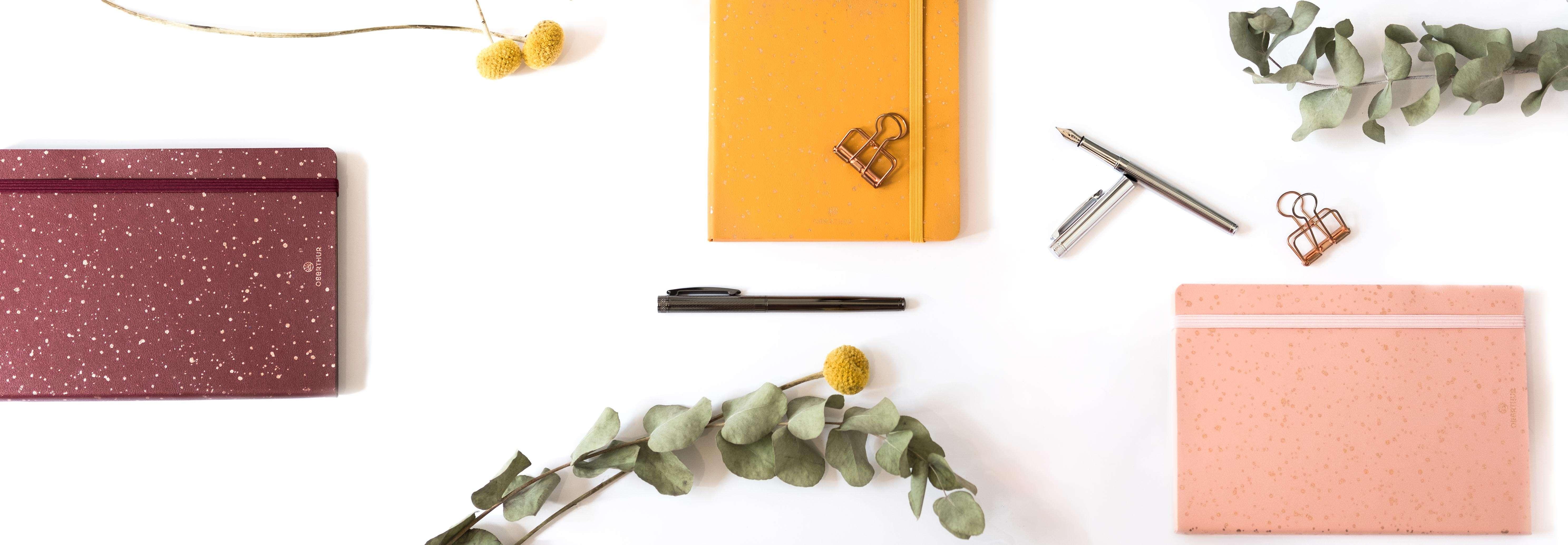 Nouveautés stylos et carnets